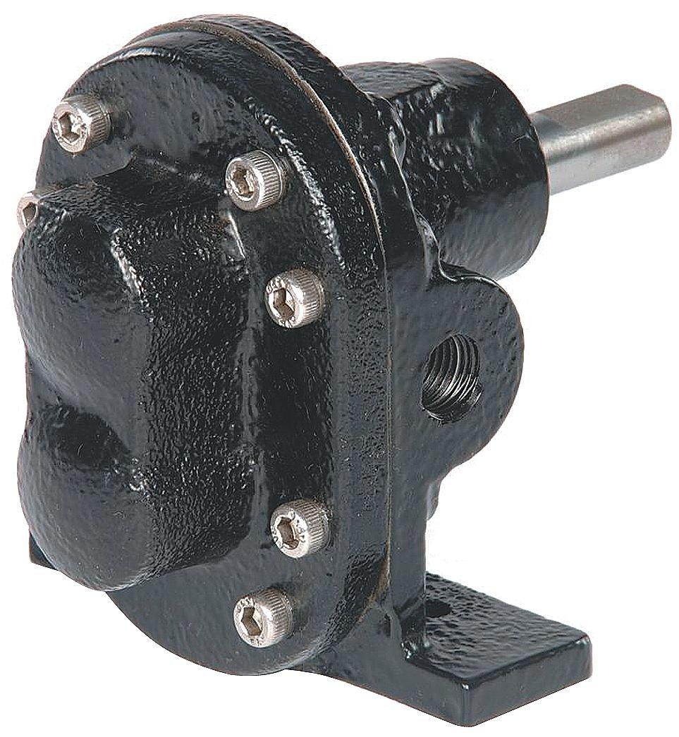 Dayton 4KHJ8 Rotary Gear Pump Head, 3/4 In., 1 HP