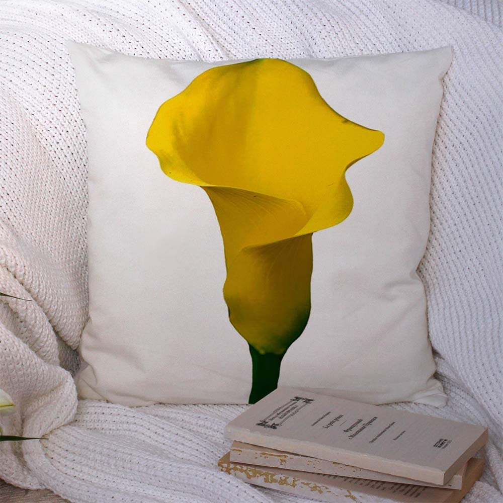 Starolac Decorative Throw Pillow Case Colorful Beautiful Yellow Calla Lily White Nature Arum Exotic Green Beauty Bloom Blooming Blossom Cushion Cover Pillowcase for Lumbar Home Decor 16x16 Inch