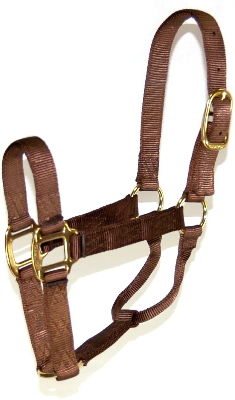 Hamilton 5-8 1 Nylon Quality Horse Halter