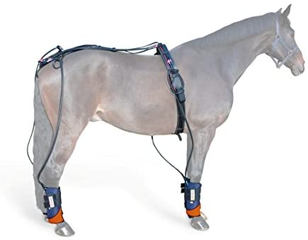Mounty Cool & Press Complete - Reduce Your Horse's Aches, Pain & Injuries with Pulsating Cooling Massage for Horse Therapy & Training!