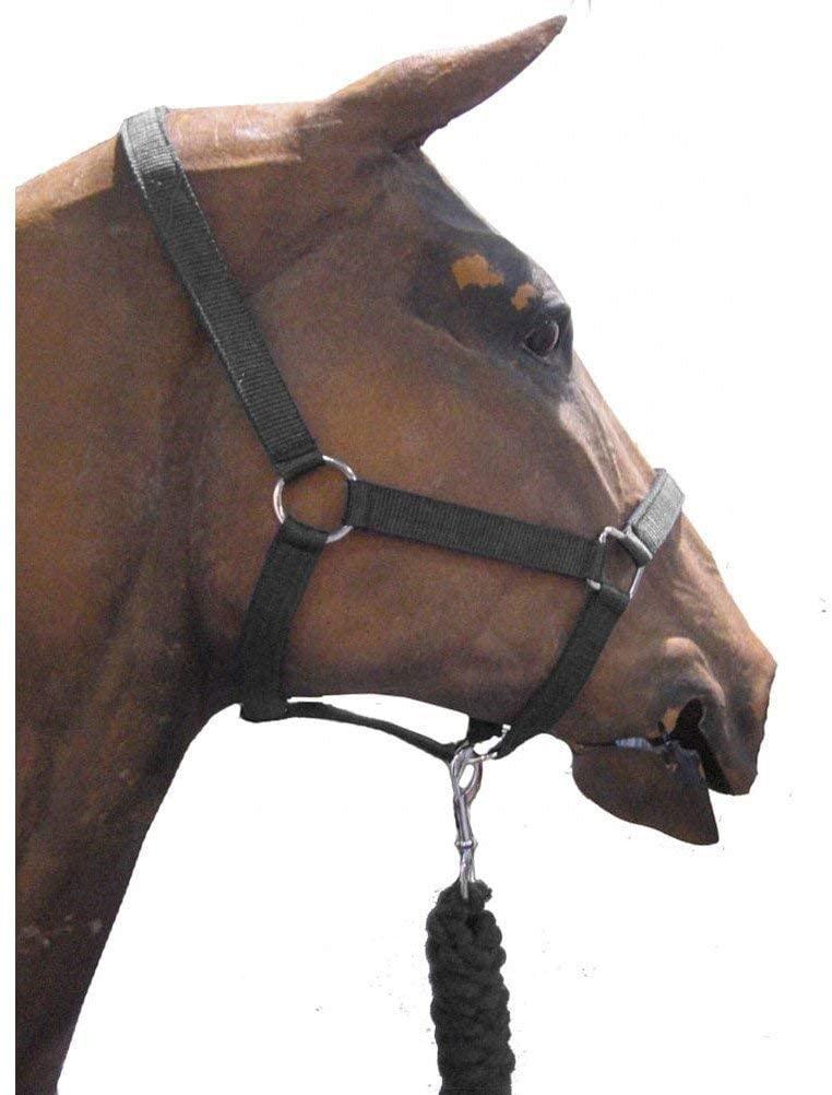 Roma Headcollar/Leadrope Set Black Pony