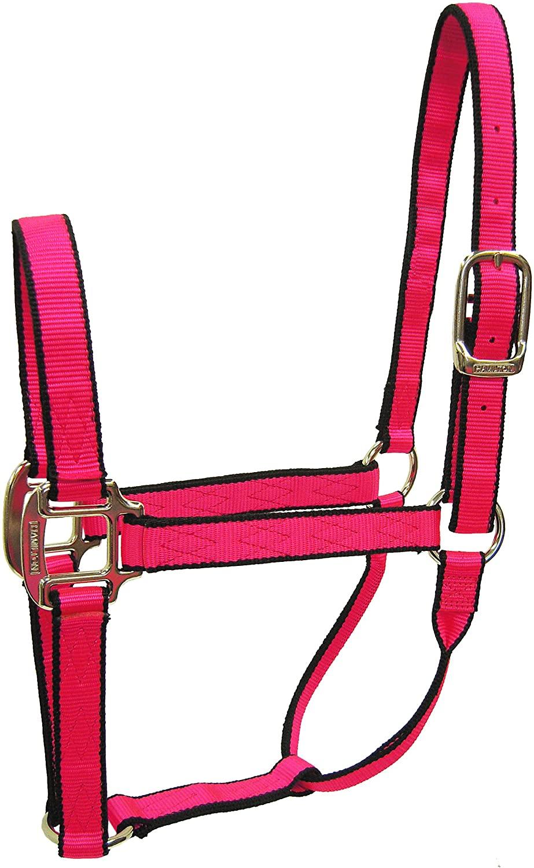 Hamilton Nylon Quality Halter for 100 to 200 lb Foal/Mini Horse, 3/4