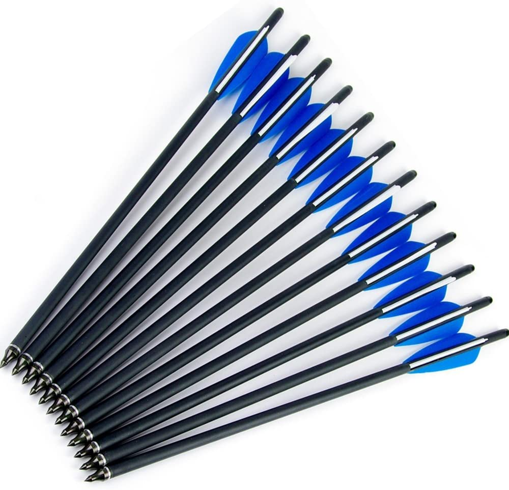 Fay Outdoor Sport 12pk Carbon Arrows Crossbow Bolts with Half Moon Nock and Aluminum Pin 100 Grain Screw-in Points