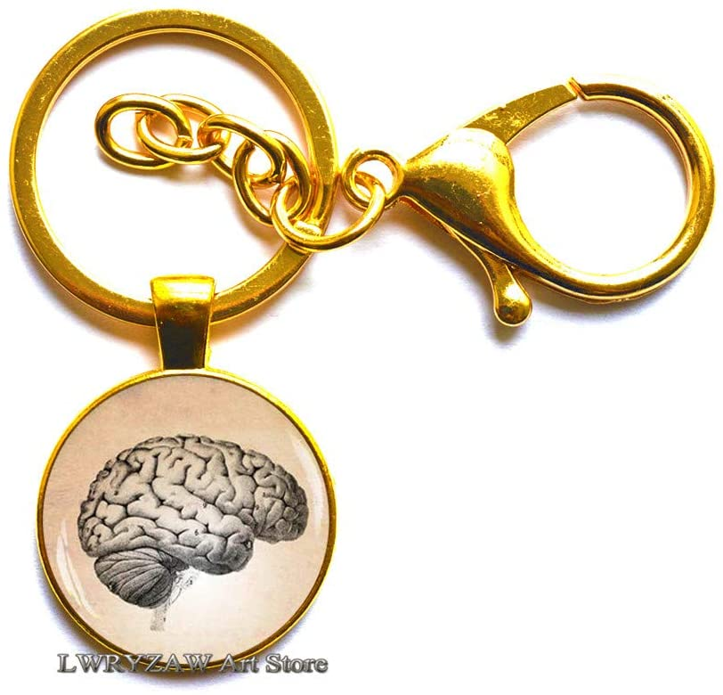 Anatomical Brain Key Ring, Anatomical Brain Keychain, Men's Keychain, Human Brain Anatomy Key Ring,Art Graphic,M101