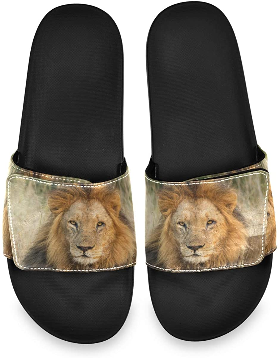 All agree Male Lion Relaxing The Grass with Eye Contact Men's Summer Sandals Slide House Adjustable Slippers Home Boys