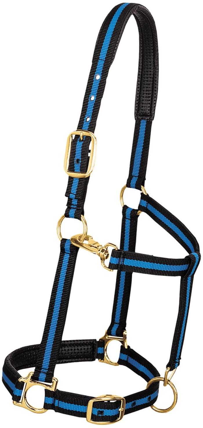 Weaver Leather Padded Adjustable Nylon Horse Halter