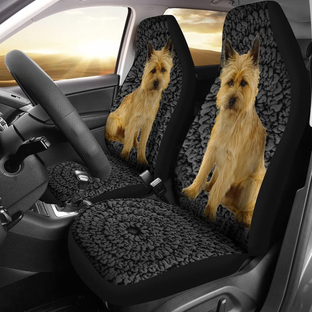 Pawlion Cairn Terrier Print Car Seat Covers