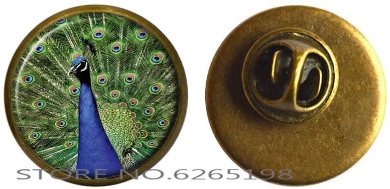Peacock Brooch Bird Jewelry Nature Glass Dome Art Pin,Peacock Photo Pin,Glass Pin Brooch,N270