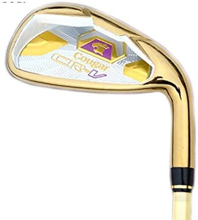 YINZHI Golf Accessories, Golf Club Practice Rod (Black) (Color : Gold)