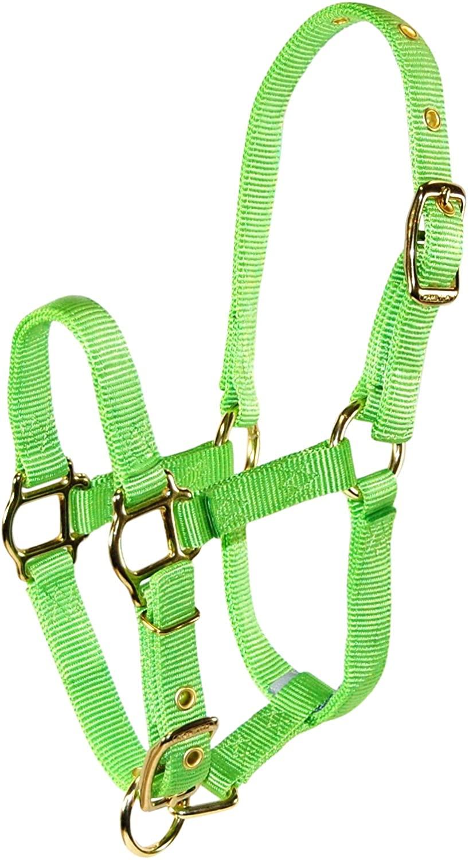 Hamilton Adjustable Miniature Nylon Horse Halter, Weanling, Lime Green