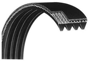 Precor d&d Main Drive Belt 10217-132 Works c932 c934 956 9.31 9.33 954 952 Treadmill