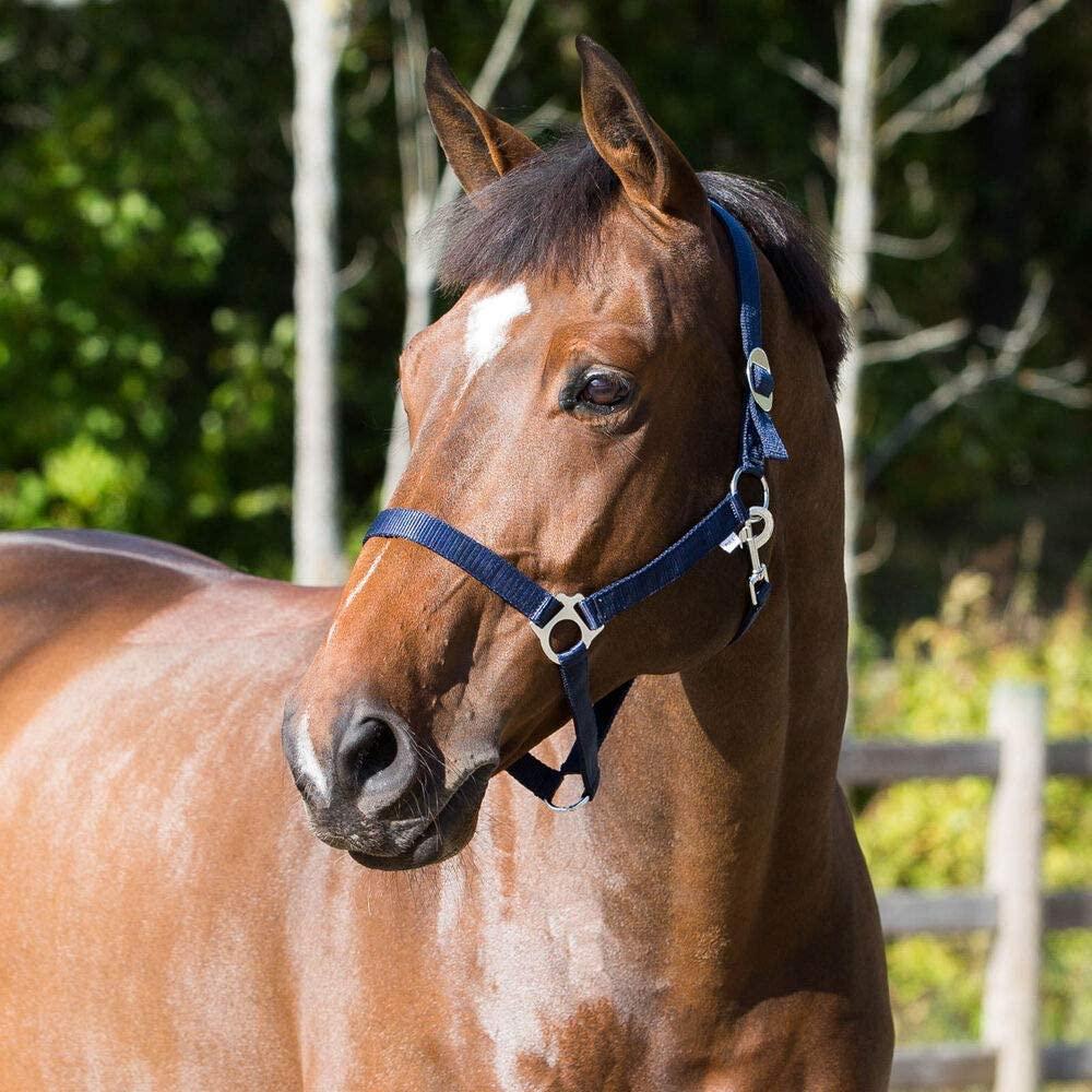 Horze Basic Nylon Horse Halter