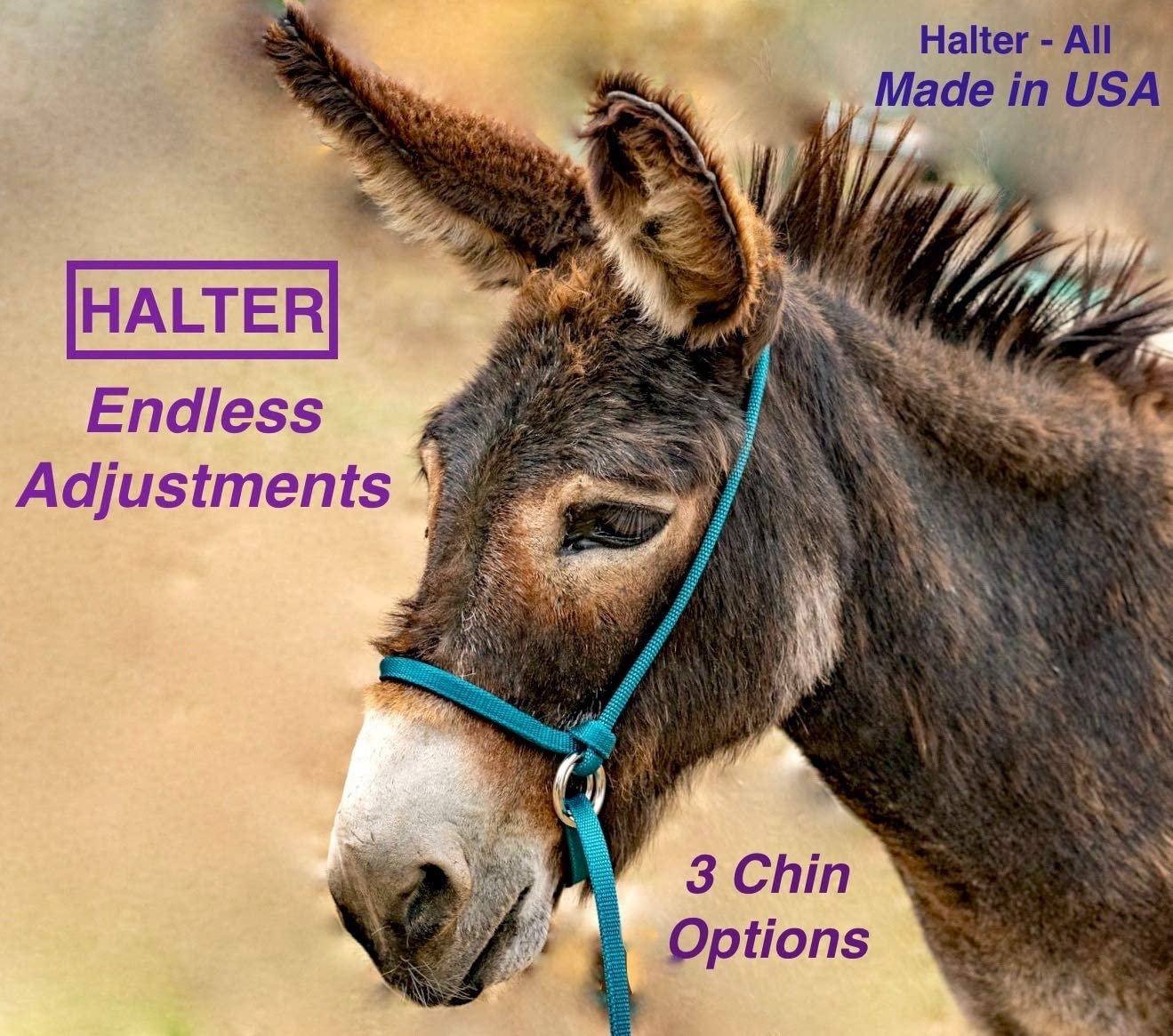 Halter-All Medium Pattern Donkey Small Mule Endless Adjustable Halter & Lead USA