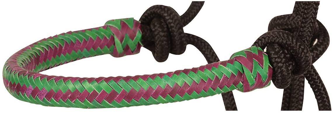Classic Equine Braided Rawhide Rope Halter, Purple/Teal
