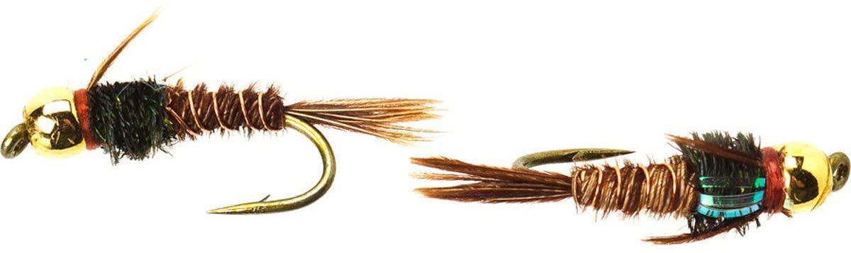 Umpqua Flashback Pheasant Tail Gold Bead Tungsten Fly Fishing Multi-Packs