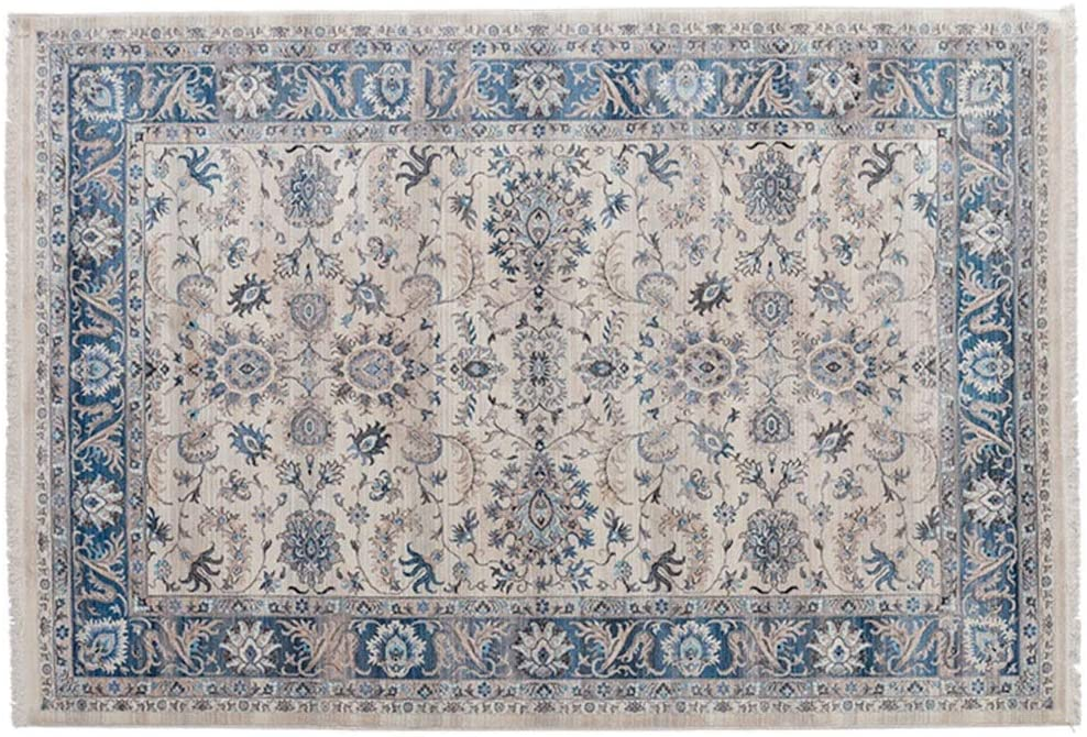 Traditional Persian Vintage Design Rug High Class Living Dinning Room Bedroom Rugs (Color : Multi-Colored-3)
