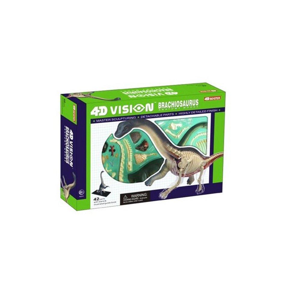 4D Vision Puzzle Assembling Toys Tyrannosaurus Stegosaurus Triceratops Brachiosaurus Full Skeleton Anatomy Model (Brachiosaurus)