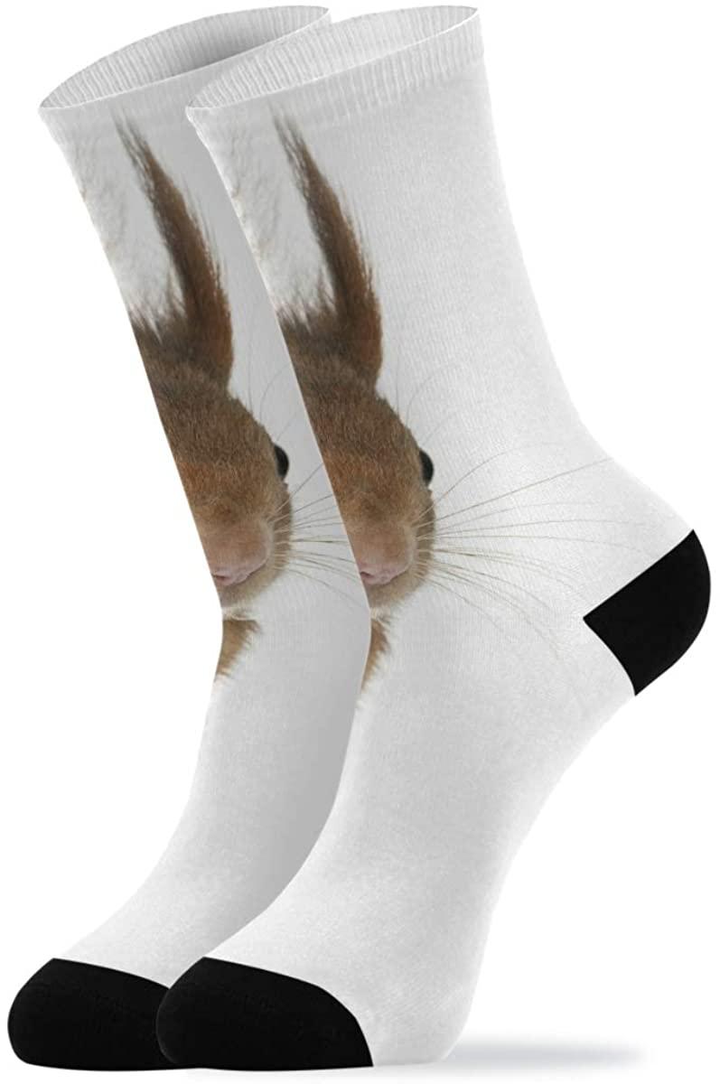 Novelty Socks For Women Eurasian Red Squirrel Cute Sciurus Vulgaris Quarter Crew Socks Mid Calf Socks Men