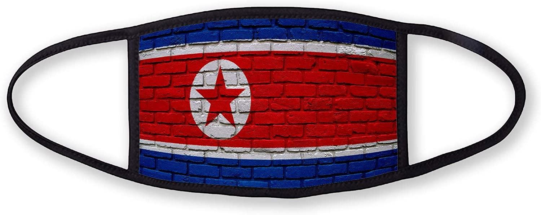3-Layer reusable/washable Facemask - Flag of North Korea (Korean) - Bricks Design