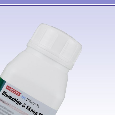 HiMedia PT025-1L Murashige and Skoog Modified Medium with CaCl2, Gamboge B5 Vitamins and Without Sucrose, Agar, 1 L