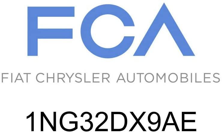 Chrysler Genuine 1NG32DX9AE Floor Carpet