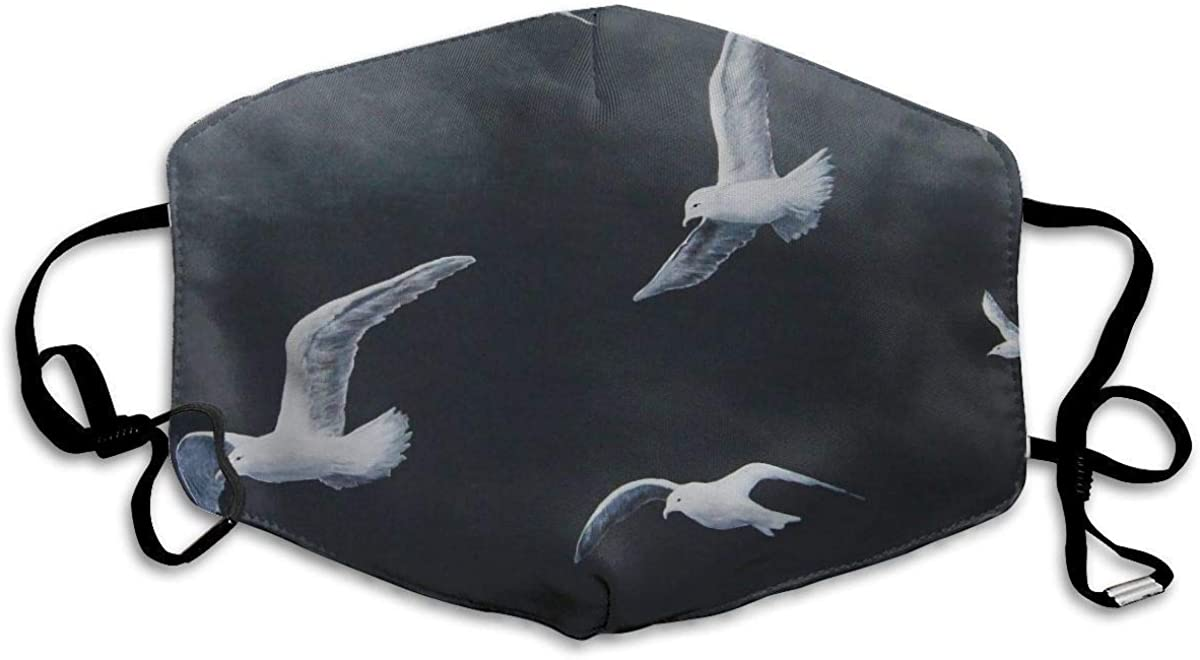 BOKUTT Unisex wind and dust for Daily Dress Up Flying Seagull Muffle Washable Reusable Holiday s for Mens and Womens with Adjustable Earloop