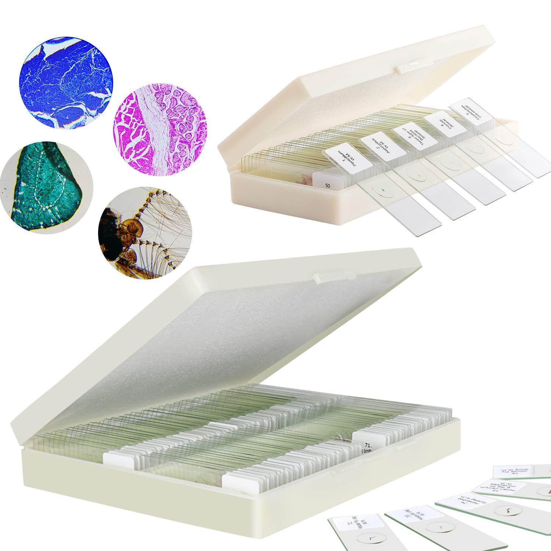 100 Pcs Prepared Microscope Slides Plus 30 Pcs Slides with Specimens