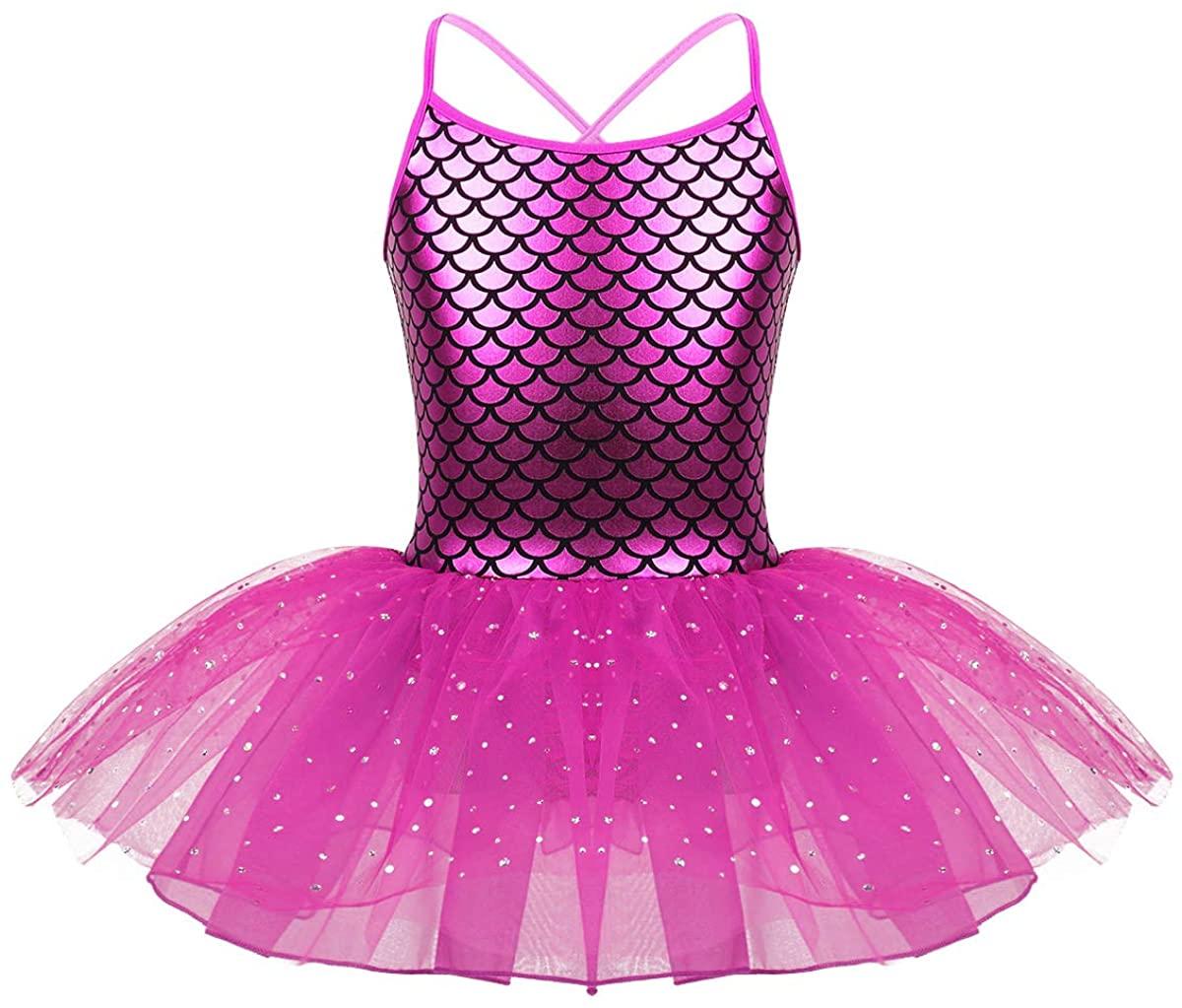 Freebily Baby Girls Fairy Princess Costume Ballerina Embroidery Ballet Leotard Dance Dress Tutus Dancewear