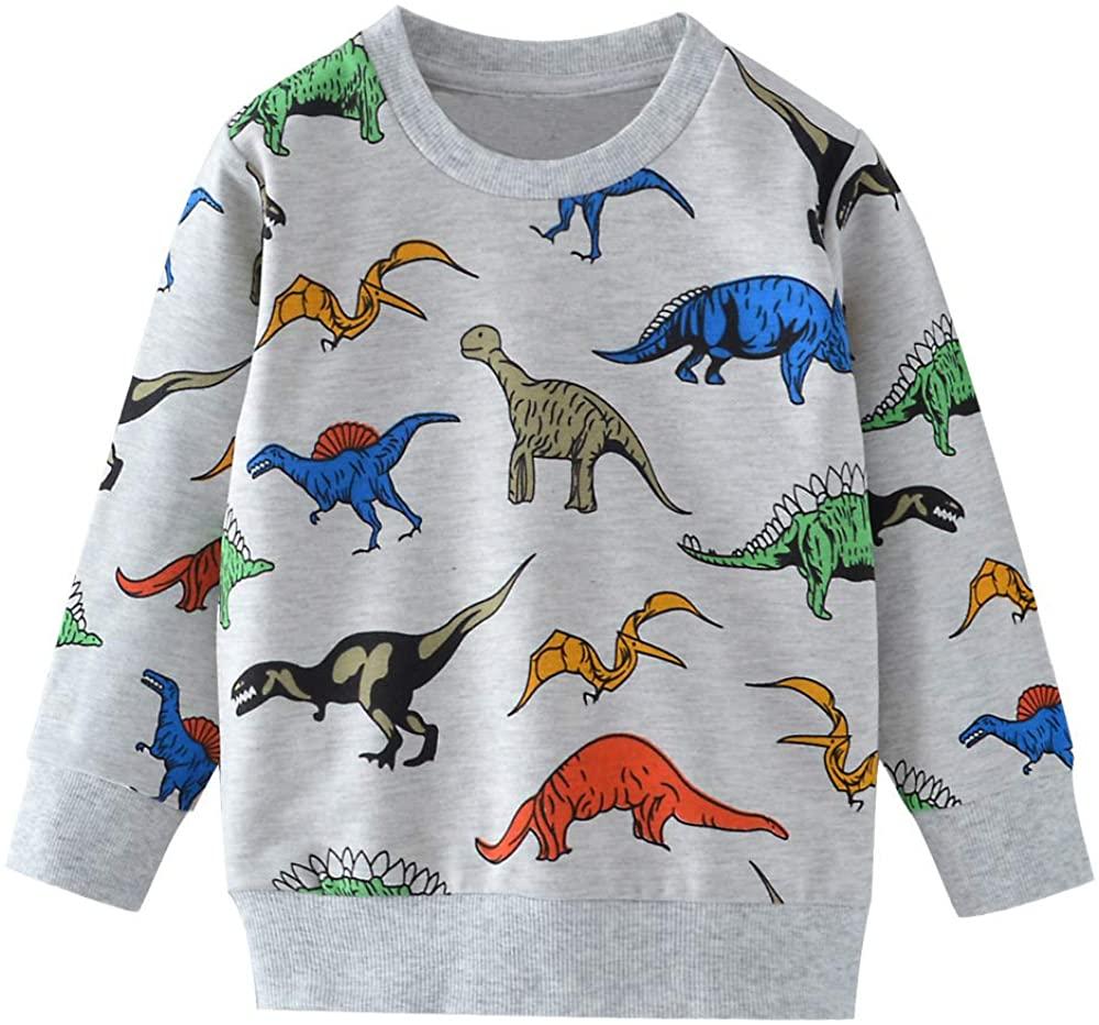 Boys Shirts Long Sleeve Cartoon Sweatshirt Top Cotton Toddler Kids Sport Clothes