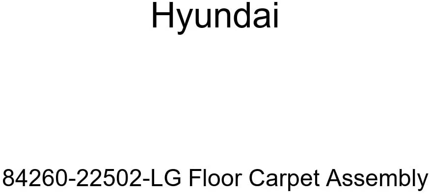 Genuine Hyundai 84260-22502-LG Floor Carpet Assembly