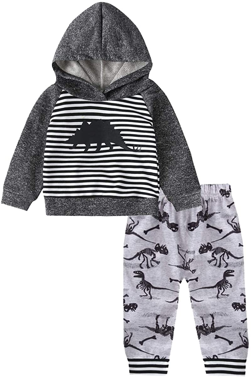 Baby Boys Girls Organic Cotton Fall Winter Hoodie Outfit Dinosaur Print Sweater Top and Pants 2-Pieces Hoodie Set