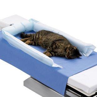 3M 53077 Bair Hugger Animal Health Blanket, Long (Pack of 10)