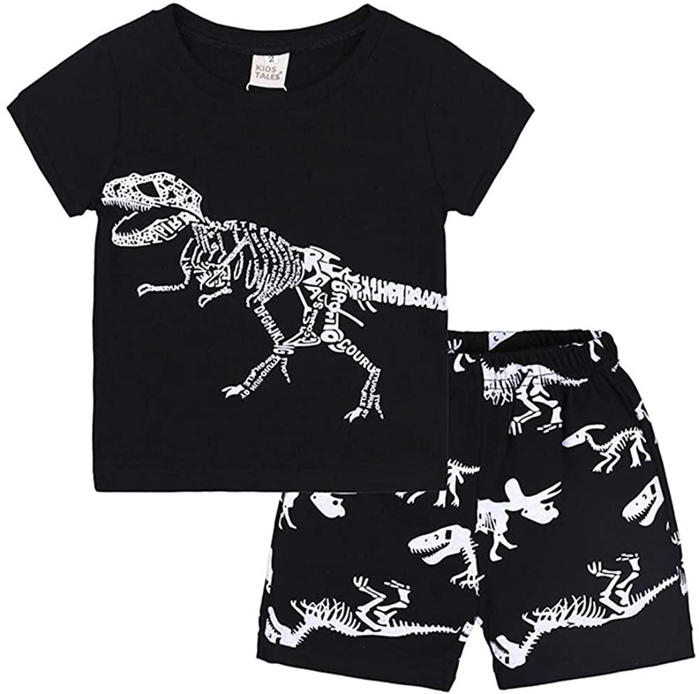 AYIYO Baby Boys' Playwear Set Short Sleeve Tee Shirts + Shorts Dinosaur Printed Casual Summer Outfits 1-7Y