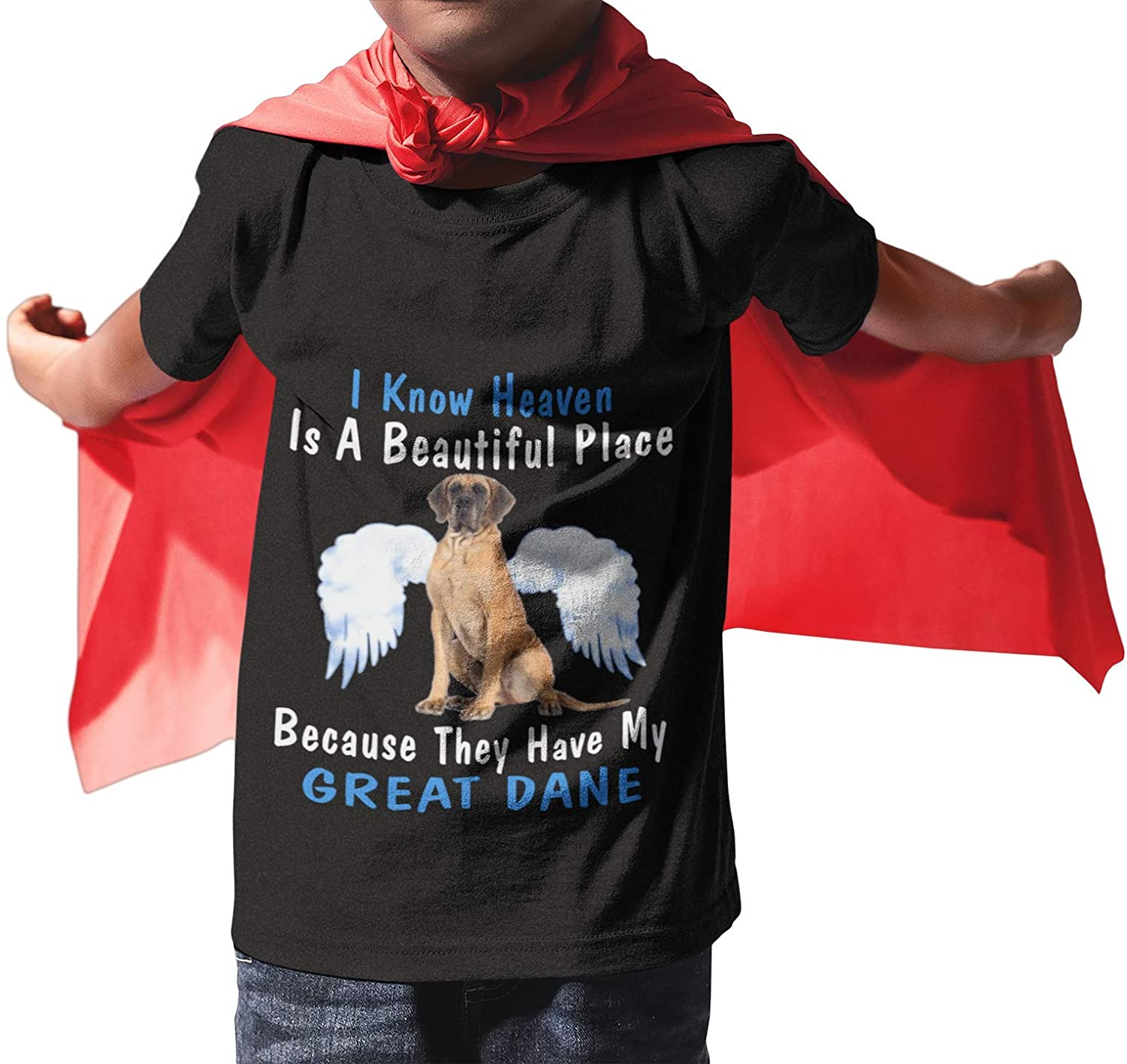 Gildan Brand - I Know Heaven is a Beautiful Place Because They Have My Great Dane - Dog Lover Gift Boys T-Shirt