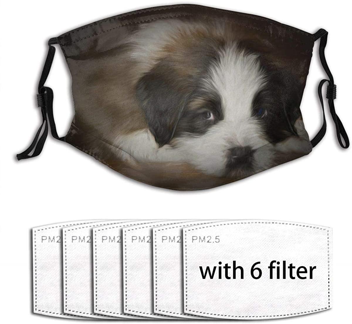 Colorful Saint Bernard Dog Print Unisex Reusable Comfortable Washable Facial Decorations (6 Filters)