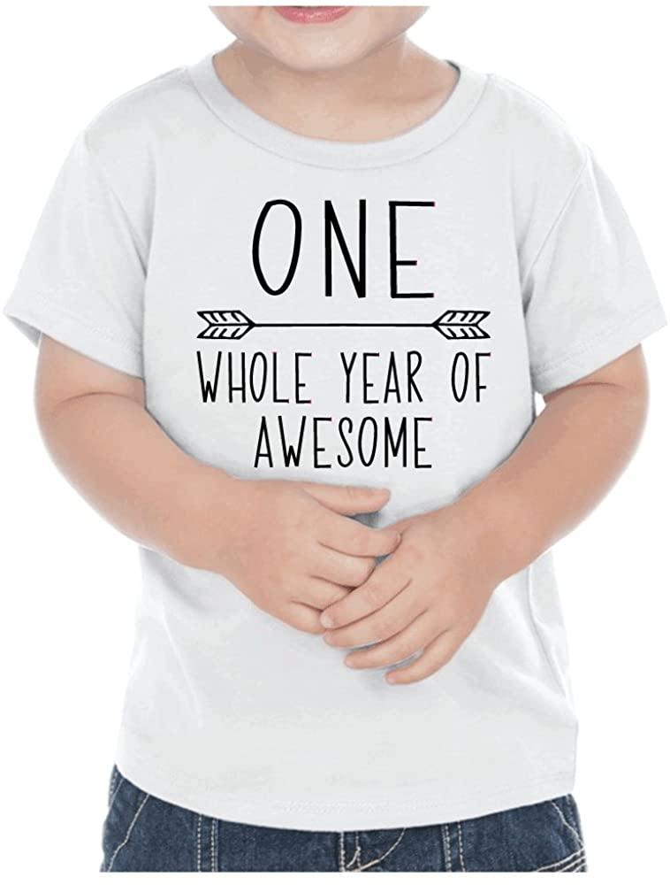 First Birthday Boy T-Shirt One Year Old Birthday Boy Outfit
