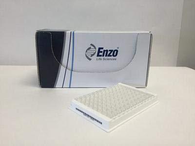 AK503-0001 - 1 Kit - Fluor-de-LYS HDAC fluorometric Cellular Activity Assay kit, Enzo Life Sciences - Each