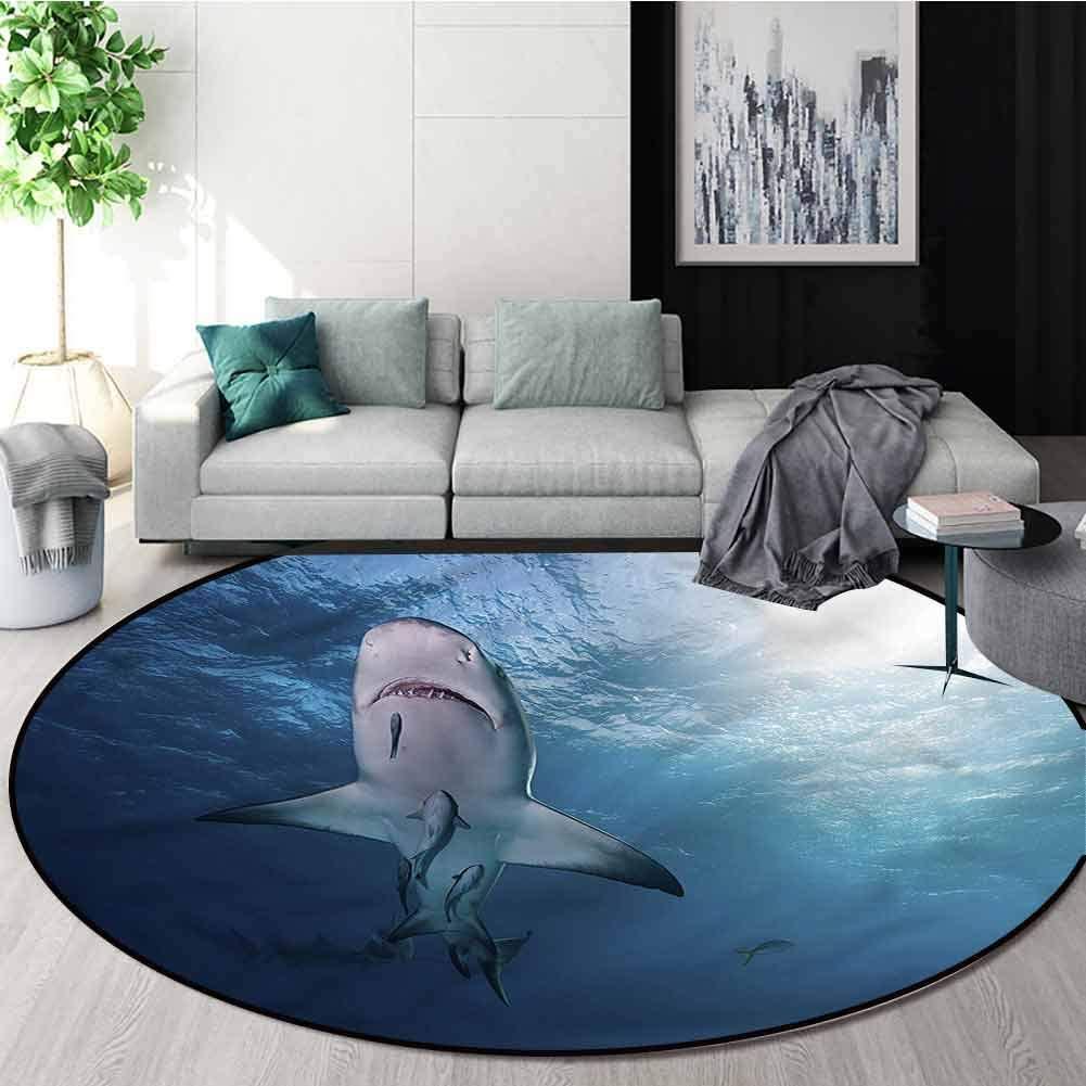 RUGSMAT Sea Animals Computer Chair Floor Mat,Baby Sharks and Fish Design Non-Slip Fabric Round Rugs for Floor Mat Carpet Diameter-35