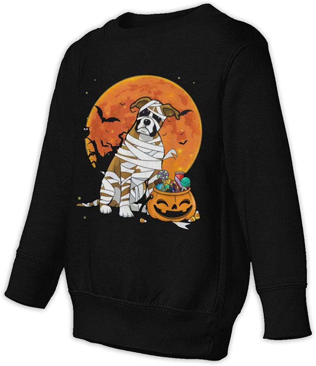 HUYAJGODGP-kiusdm Pumpkin Halloween Unisex Sweatshirt Youth Boy and Girls Pullover Sweatshirt Black
