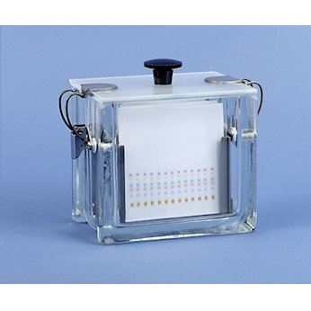 Analtech Developing Standard Tank with lid, Capacity: six 10 x 10 cm Plates