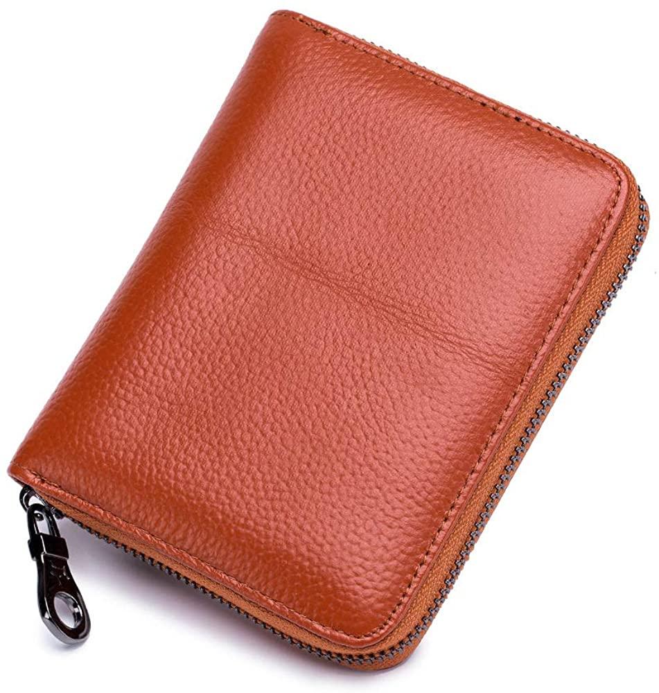 Aladin Unisex RFID Blocking Card Holder with 24 Organ-style Card Slots Large Passport Card Wallet