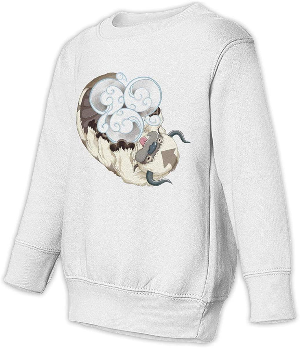 1836 Avatar The Last Airbender Appa Unisex Sweatshirt Youth Boy and Girls Pullover Sweatshirt