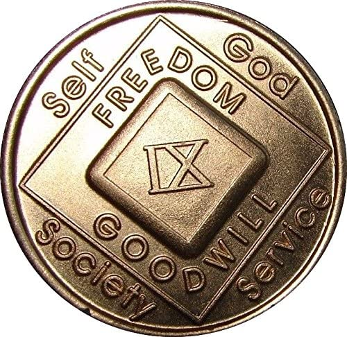 9 Year NA Medallion Official Narcotics Anonymous Chip IX