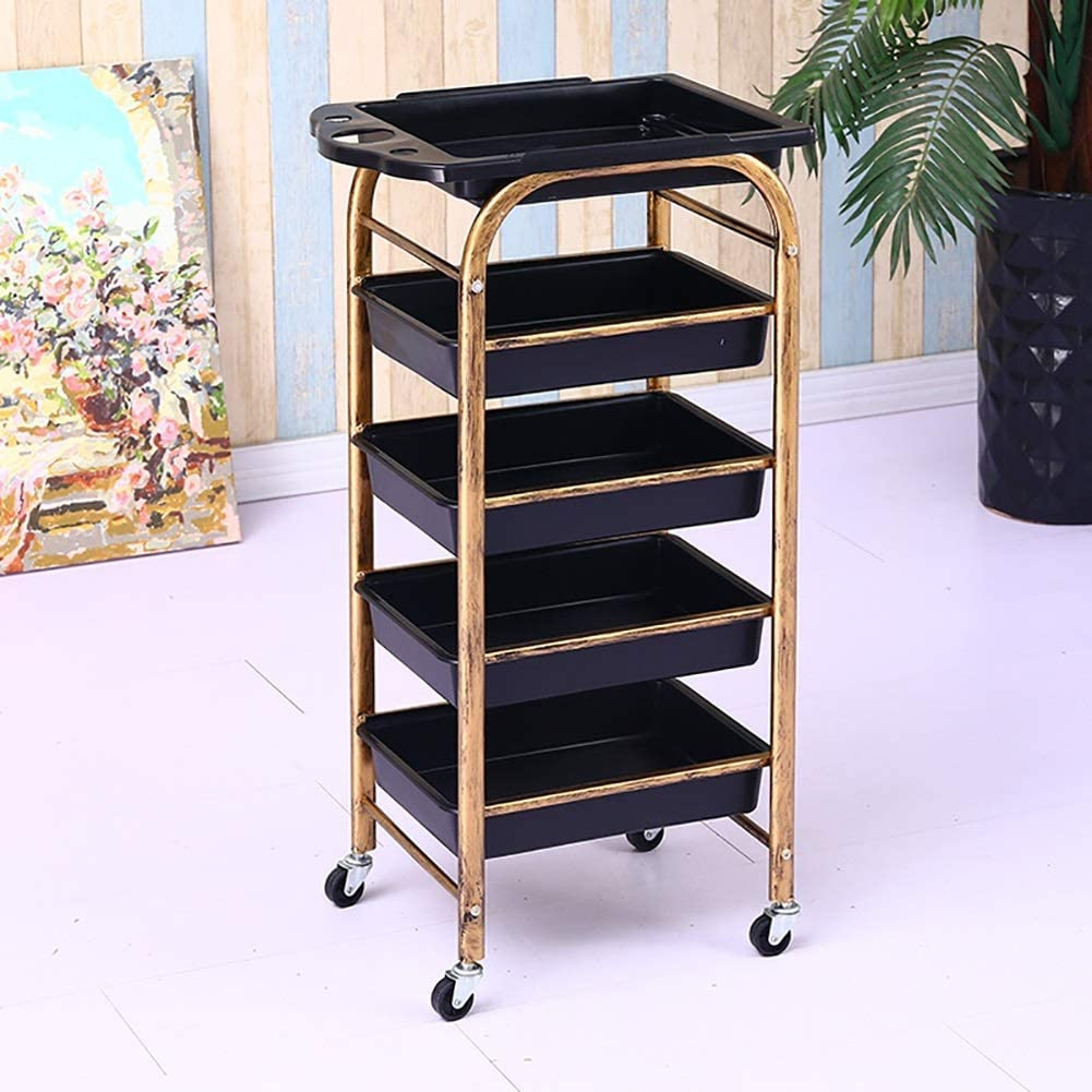cart Hospital Trolley, Medical Supplies Rack-Medical Cart Tool Beauty Salons Cart with Drawer, 5 Tier Spa Tattoo Utility Cart with Hair Dryer Holder, 15 Kg Load, Medical Rolling Trolley with Wheel