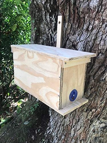 Swarm Trap for Honey Bees with Five Frames and Swarm Lure by East Coast Bees