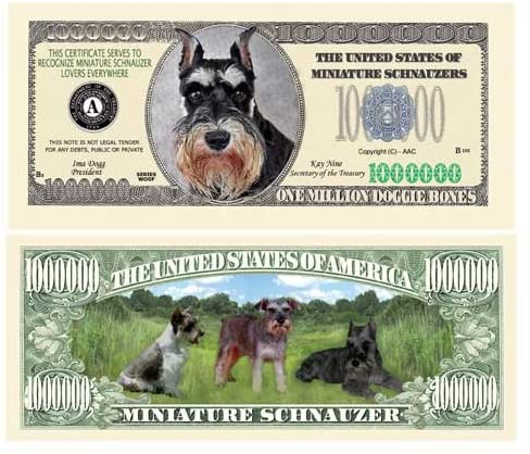 American Art Classics Mini Schnauzer Dog Million Dollar Bill - Come in Money Protector - Best Gift for Miniature Schnauzer Lovers