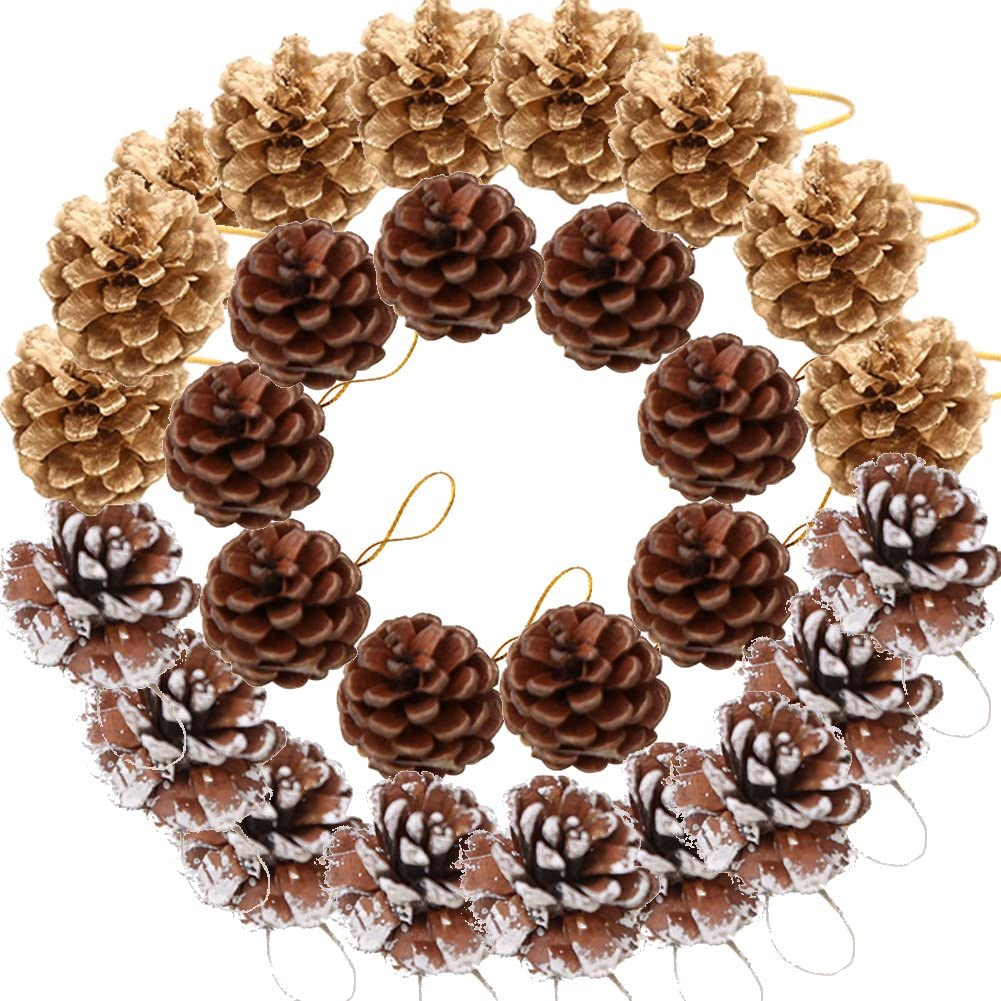 Yarssir 27 Pieces Pine Cones Ornament Natural PineCones with String Pendant Crafts for Gift Tag Tree Party Hanging Decoration(Multi Color-27 Pack)