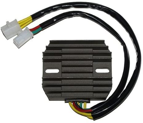 Motorize ElectroSport Charge Controller ESR 180