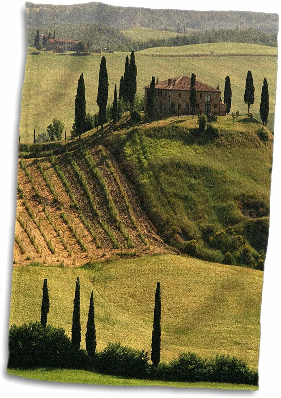 3D Rose Italy Tuscany Valdorcia Farmhouse at San Quirico dOrcia TWL_205783_1 Towel, 15