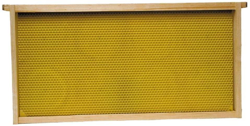 Harvest Lane Honey WWFFD-101-5 Assembled Deep Frame and Foundation, 5 Pack